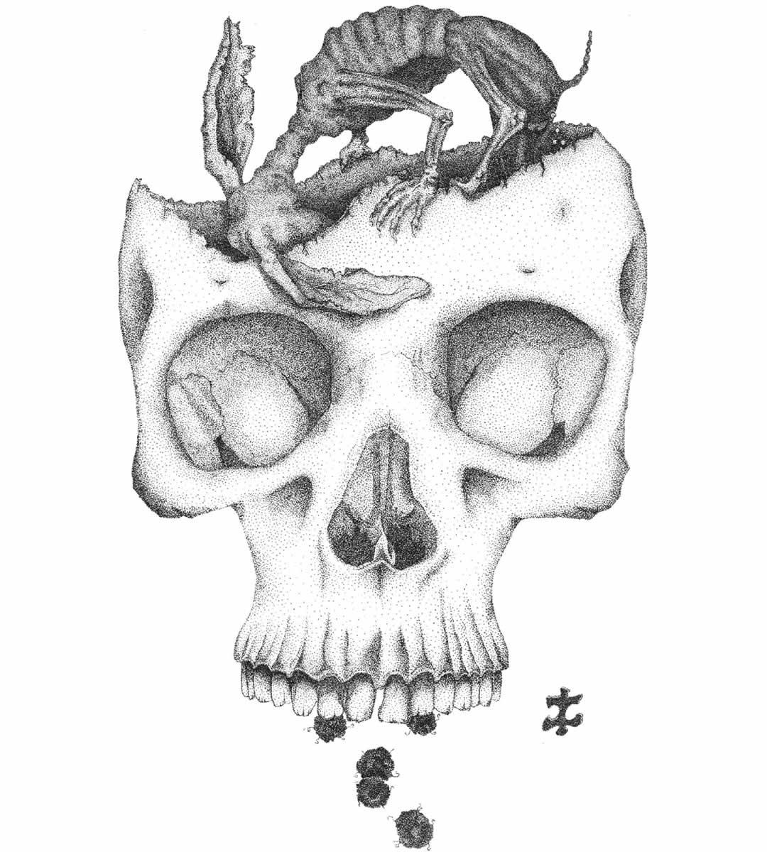 skull-droppings